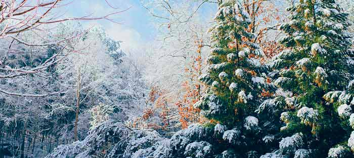 winter is a wonderful time to enjoy shopping, dining, and the wonderful sights in Morrisville, Bucks County PA
